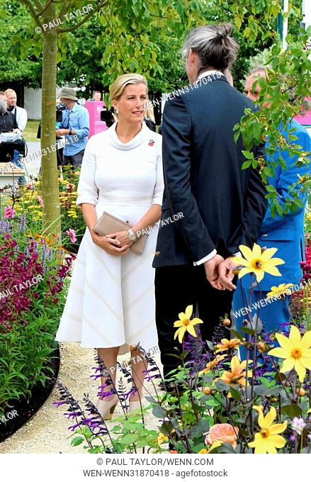 RHS Hampton Court Palace Flower Show 2017 - Press Day Featuring: Sophie, Countess of Wessex Where: East Molesey, United Kingdom When: 03 Jul 2017 Credit: Paul...