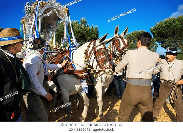 Romeria processionin Rocio in Huelva and Seville, Andalusia, Spain. Pilgrims between Huelva and Almonte
