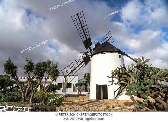 Restored windmill Molina de Antigua, Fuerteventura, Canary Islands, Spain