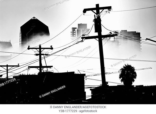 Downtown San Diego shrouded in fog
