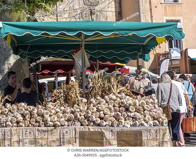 Garlic on the Market Stalls Apt Vaucluse Provence-Alpes-Côte d'Azur France
