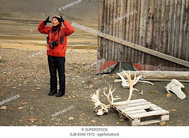 Cruise ship biologist talks about the Svalbard reindeer Rangifer tarandus platyrhynchus and how their antlers grow, Russebukta, Edgeoya
