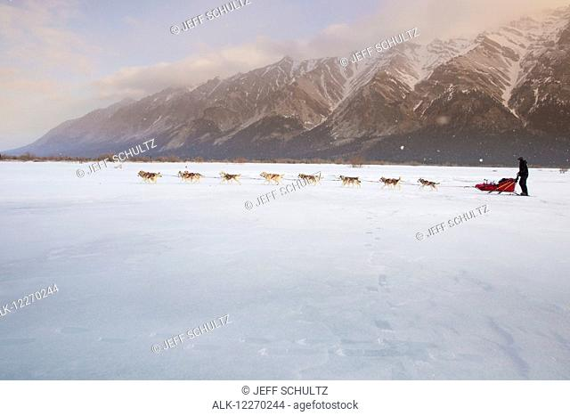 Mike Ellis runs on the South Fork of the Kuskokwim as he leaves Rohn during the 2014 Iditarod