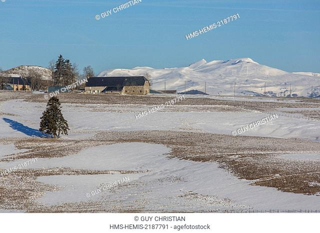 France, Puy de Dome, near La Godivelle, plateau of Cezallier landscape, Monts-dore hills ans puy de Sancy in the background