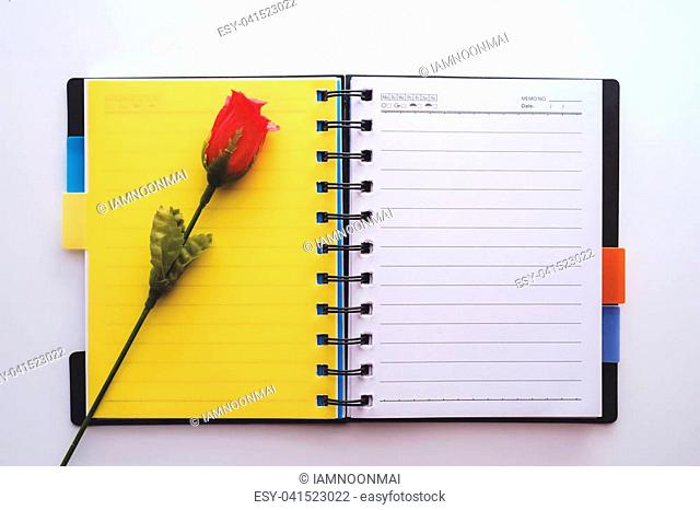Red rose (Artificial flower) on blank page of opened notebook on white background