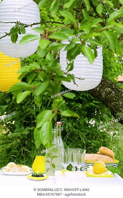 Garden, lemon buffet with lampions