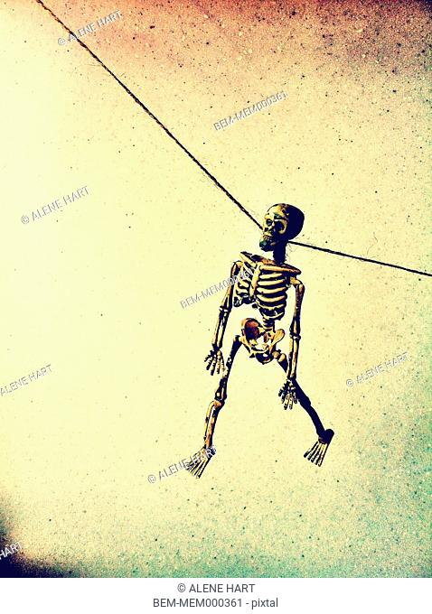 Skeleton hanging from wire