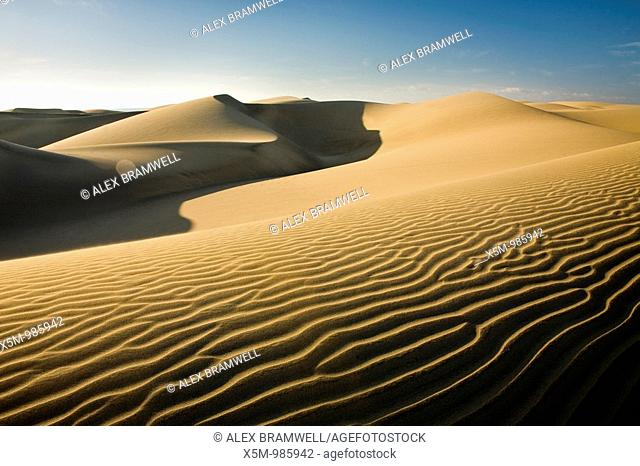 The sand dunes at Maspalomas in Gran Canaria