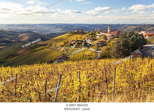 Rolling Mediterranean landscape with vineyards and town on hill