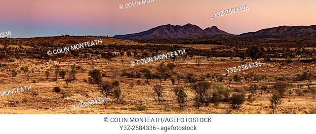 Mt Sonder, dawn panorama, 4th highest peak in Northern Territory, MacDonnell Ranges, Cenral Australia