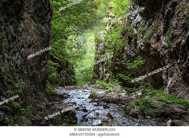 Weissenbachklamm (gorge)