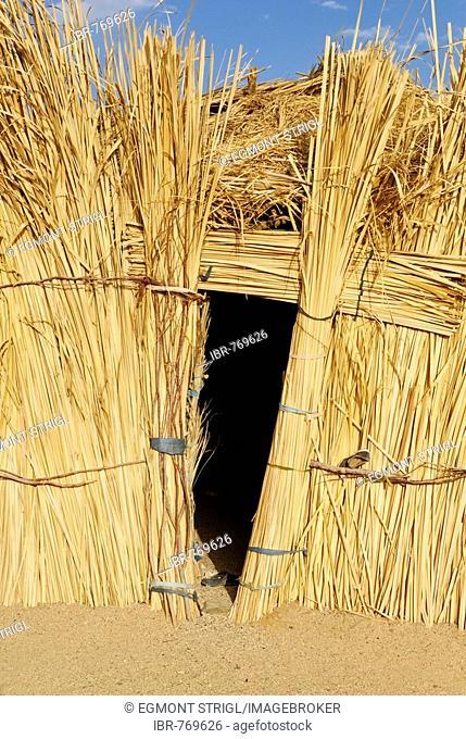 Tuareg thatched palm hut, Zeriba, Hoggar, Ahaggar, Wilaya Tamanrasset, Algeria, North Africa, Africa
