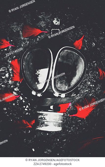Top view of black and white old gas mask on ground covered with red feathers