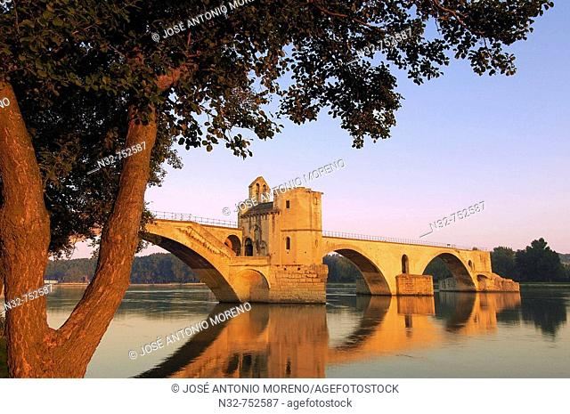 Saint Benezet bridge over Rhone river, Avignon. Vaucluse, Provence-Alpes-Côte d'Azur, Rhone valley, Provence, France