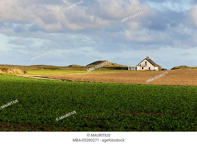 Farmhouse in Jutland, Denmark