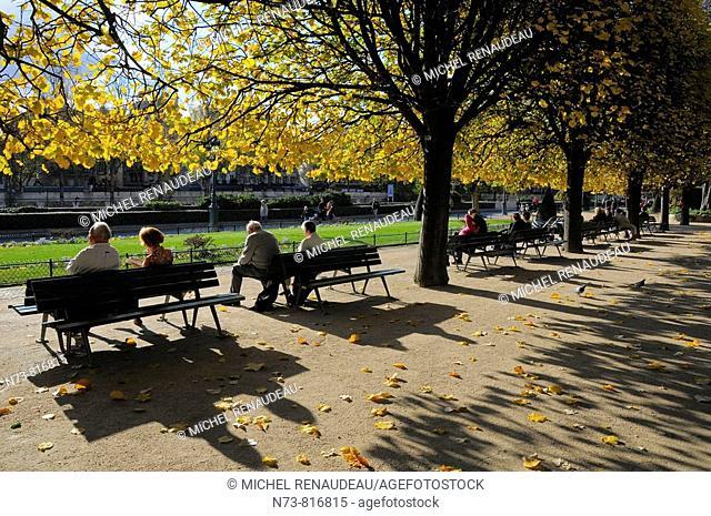 Jean XXIII Square, Île de la Cité in autumn, Paris, France