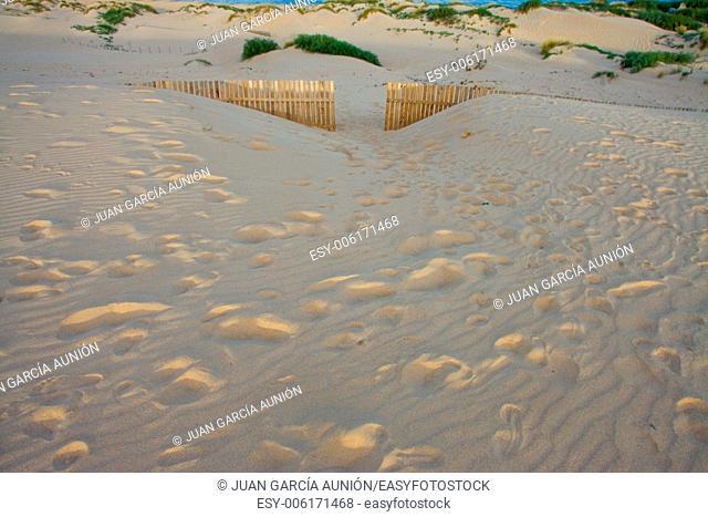 Wooden Fences door On Deserted Beach Dunes In Tarifa, Spain