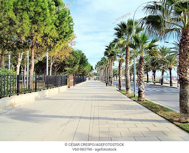 -Cambrils- Tarragona(Spain)