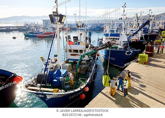 Fishing port. Hondarribia. Gipuzkoa. Basque Country. Spain