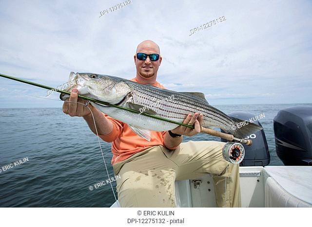 Fisherman holding striper fish in the Boston harbour; Boston, Massachusetts, United States of America