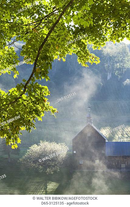 USA, New England, Vermont, South Pomfret, farm in autumn