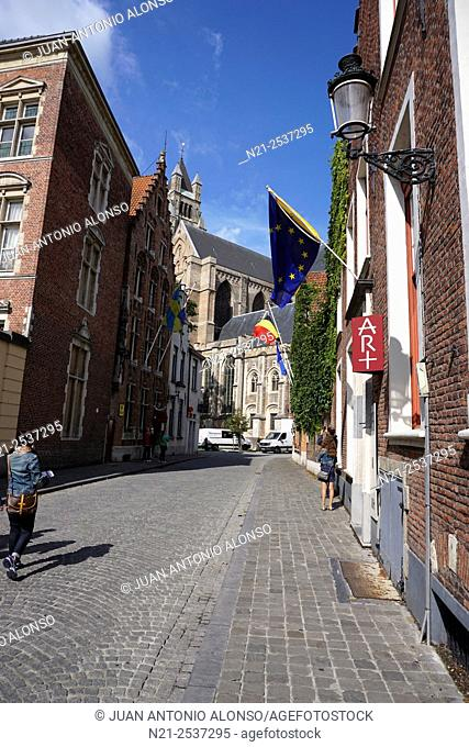 Street leading to St. Salvator's Cathedral. Bruges, Belgium, Europe
