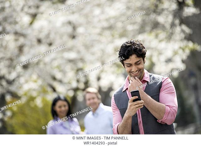 People outdoors in the city in spring time. Cherry blossom on the trees. A man checking his cell phone, and two people behind him