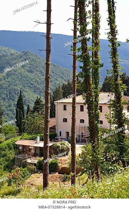 House, villa, Tuscany, Italy
