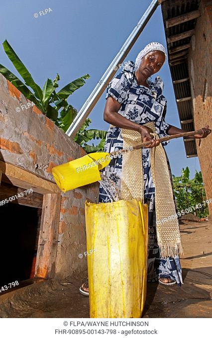 Woman getting water from storage pit, supplied by guttering from house roof, Uganda, June