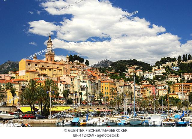 Old town of Menton and St. Michel's Church, Menton, Côte d'Azur, France