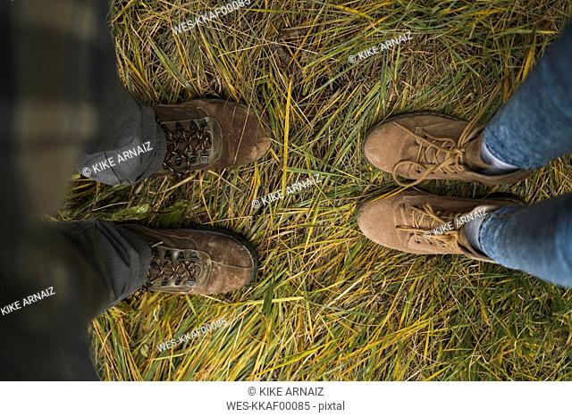Legs of a couple standing in grass
