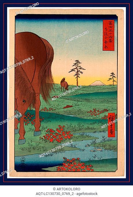 Shimosa koganehara, Kogane fields in Shimosa Province., Ando, Hiroshige, 1797-1858, artist, 1858., 1 print : woodcut, color ; 36 x 24.8 cm