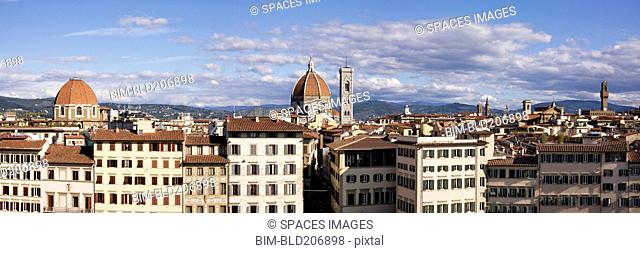 Florence Skyline with Cathedral in Background