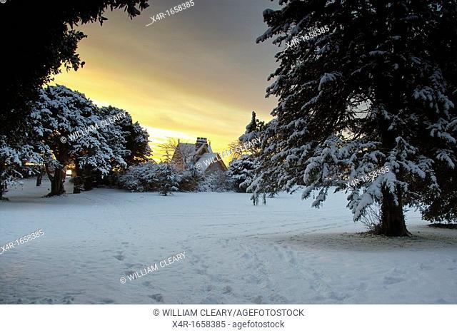 A snow covered St. Anne's Park at dawn, Dublin, Ireland