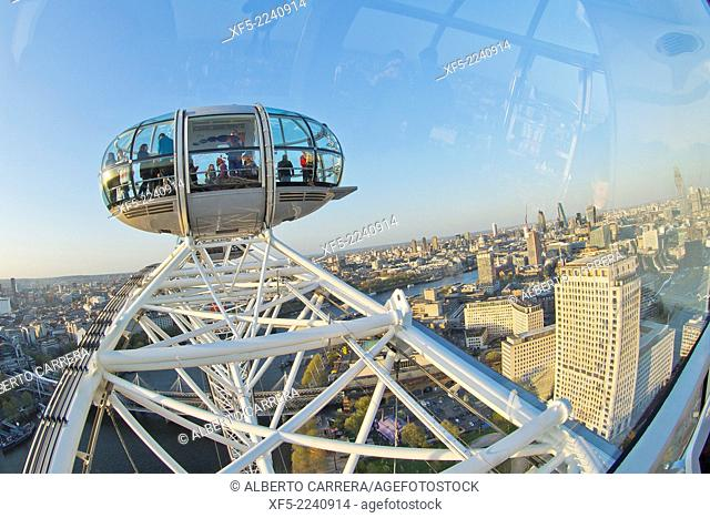 The London Eye, London, England, Great Britain, Europe
