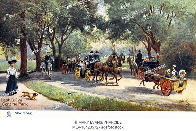 Horses and carriages on East Drive in Central Park, New York, America