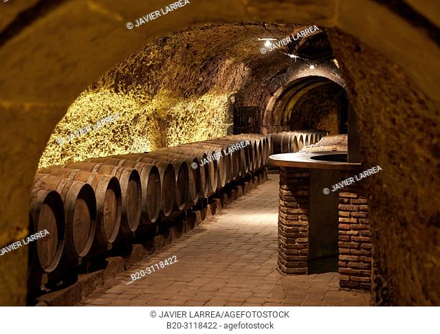 Cellar wine barrels, Rioja Alavesa, Araba, Basque Country, Spain, Europe