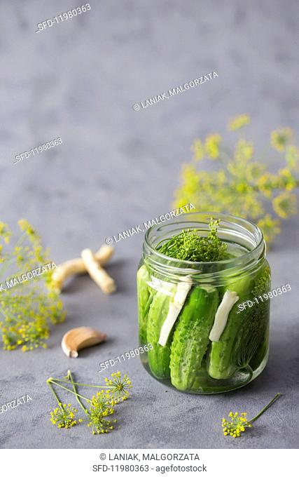 Gherkins with dill, horseradish and garlic