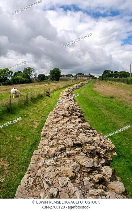 England, Yorkshire, Newcastle - A young female photographer taking pictures with her camera of Hadrian's Wall, also known as the Roman Wall