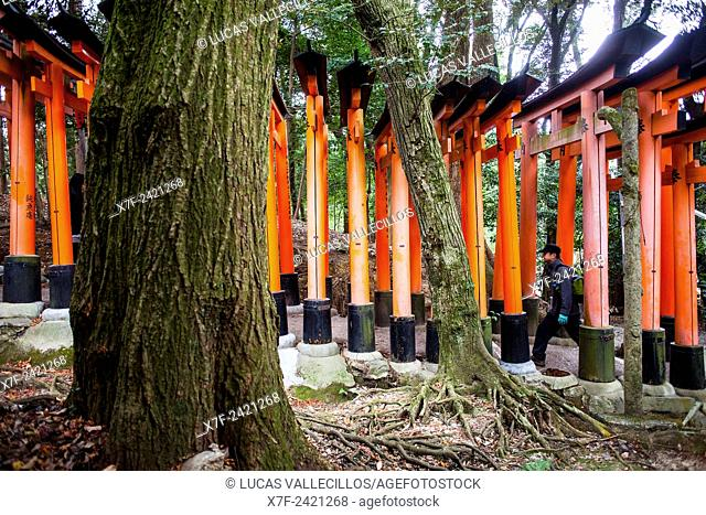 Torii gates at Fushimi Inari-Taisha sanctuary,Kyoto, Japan