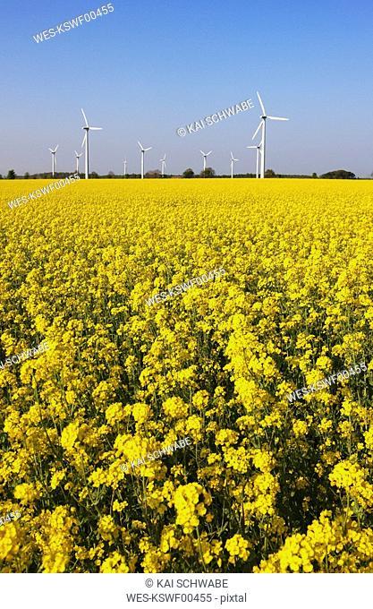 Germany, Lower Saxony, Wind park