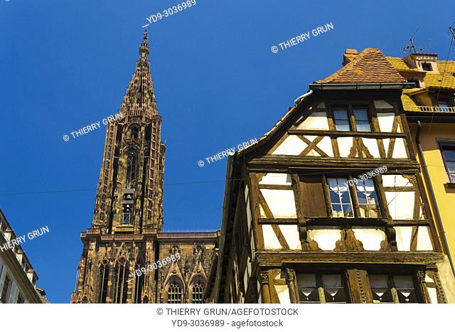 France, Bas Rhin (67), Strasbourg town, cathedral place, Notre Dame de Strasbourg cathedral and half-timrbered house