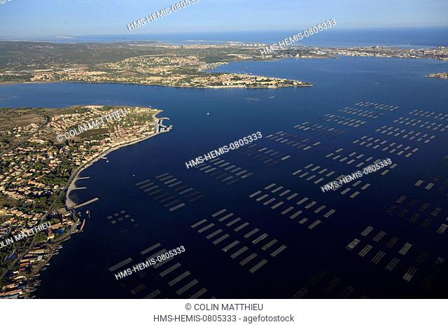France, Herault, Bouzigues, oyster beds of the Etang de Thau and Balaruc les Bains in the background (aerial view)