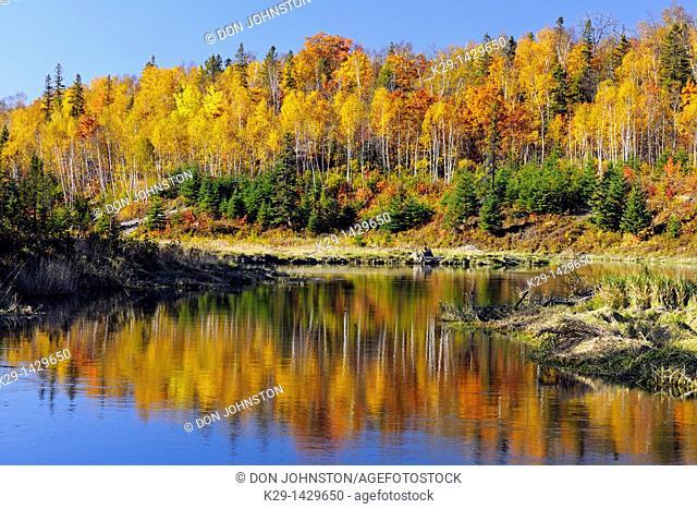 Autumn reflections in Junction Creek Greater Sudbury Ontario