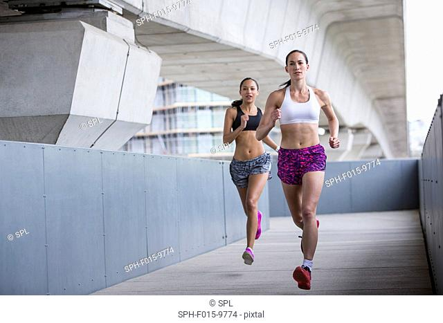 MODEL RELEASED. Two young women racing
