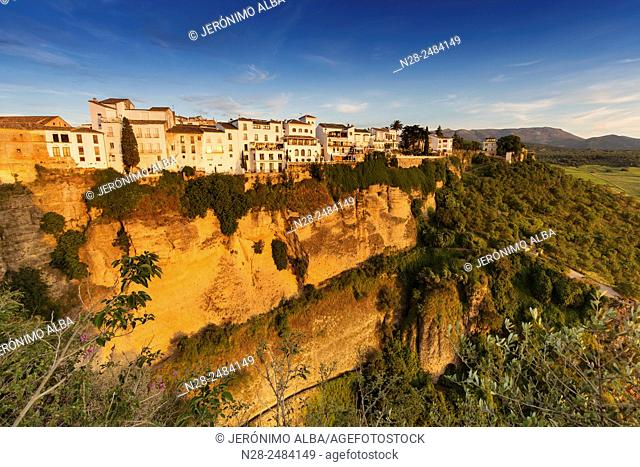 Cliffside, the 'tajo' (canyon), Ronda, Serrania de Ronda, Malaga province, Andalusia, Spain