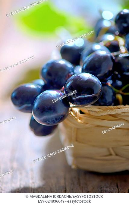 grapes in a basket on wooden background