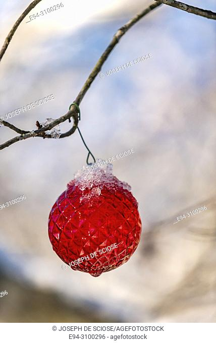 A single red holiday ornament hanging from a tree branch out doors with some snow on top. Birmingham, Alabama, USA
