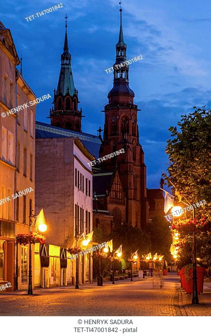 Poland, Lower Silesian, Legnica, Cathedral of Holy Apostles Peter and Paul