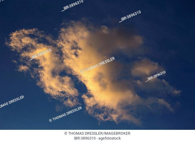 Altocumulus clouds in sunset light, Andalusia, Spain